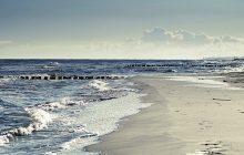 Ekspert o przyczynach zanieczyszczenia polskich wód