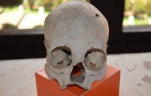 Iran: Polscy archeolodzy odkryli stożkowato wydłużone ludzkie czaszki