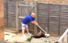 Do sieci trafiło wstrząsające nagranie. Mężczyzna bije psa deską i kijem od mopa [WIDEO]