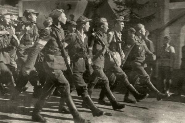 Narodowe Siły Zbrojne: W obronie prawdy historycznej