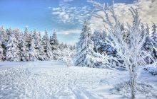 Długoterminowe prognozy wskazują na powrót zimy. Synoptycy przewidują gwałtowny spadek temperatur