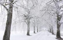 Do Polski wraca zima. Miejscami w weekend spadnie niemal pół metra śniegu!