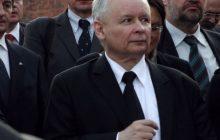 Zaskakujące wyniki sondażu! PiS z ogromnym spadkiem poparcia i aż siedem partii w Sejmie