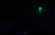 To trzeba zobaczyć. Thomas Morgenstern odważył się na skok w ciemności! [WIDEO]