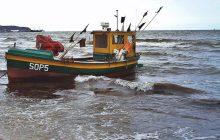 Na Bałtyku może dojść do katastrofy ekologicznej! Konieczne natychmiastowe działanie