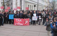 Warszawscy studenci pikietowali przeciwko aborcji. Manifestacja pod UW [WIDEO]