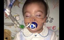 Apelacja rodziców Alfiego Evansa odrzucona przez brytyjski sąd! Zostaje już tylko nadzieja?