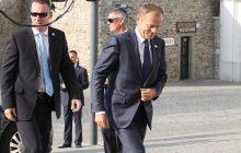 Donald Tusk wystartuje w wyborach prezydenckich? Schetyna: