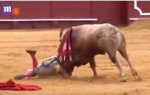 Potworny wypadek podczas hiszpańskiej korridy. Byk mocno poturbował znanego matadora [WIDEO]