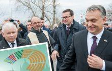 Węgry: Viktor Orban zwycięża w wyborach parlamentarnych. Podziękował za wsparcie z Polski