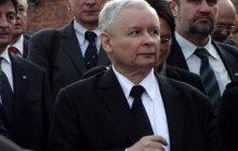 Kaczyński odda władzę w partii? Rzeczniczka PiS komentuje doniesienia