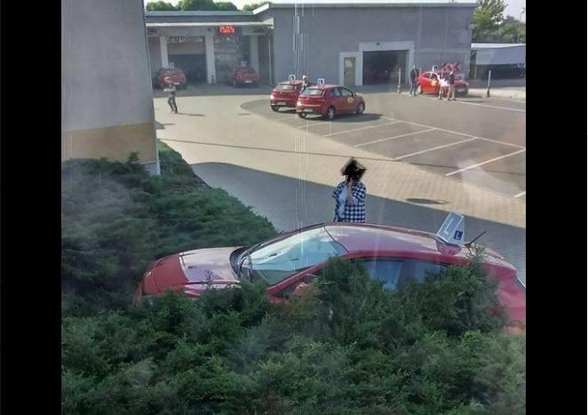 Takiego finału egzaminu na prawo jazdy nie spodziewał się nikt. Zdjęcie stało się hitem internetu