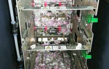Szczury zniszczyły pieniądze w bankomacie. Technicy nie wierzyli własnym oczom [FOTO]