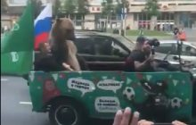 Mistrzostwa Świata: Przed meczem Rosji z Arabią Saudyjską pojawił się niedźwiedź w samochodzie [WIDEO]