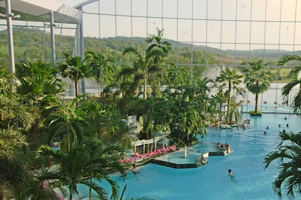 Suntago Wodny Świat, park wodny, palmy baseny